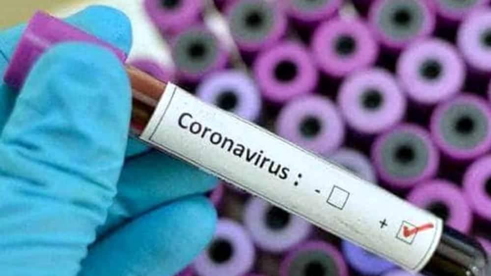 coronavirus2-2